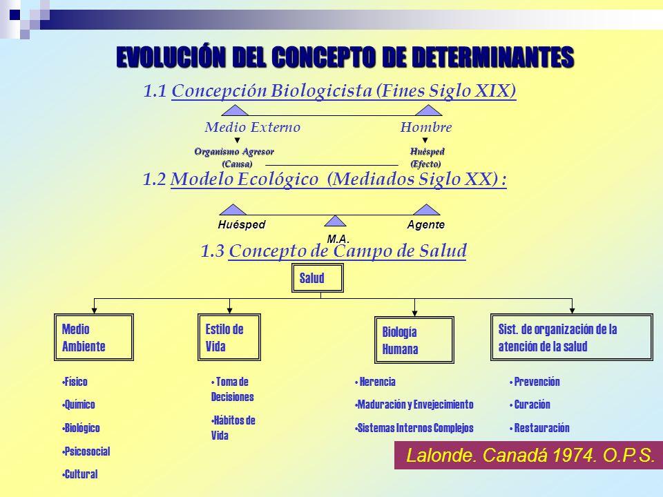 ENTORNO FISICO ENTORNO SOCIOECONOMICO HABITOS DE SALUD CAPACIDAD INDIVIDUAL Y APTITUDES ADAPTACION SERVICIOS SALUD Evans 1989