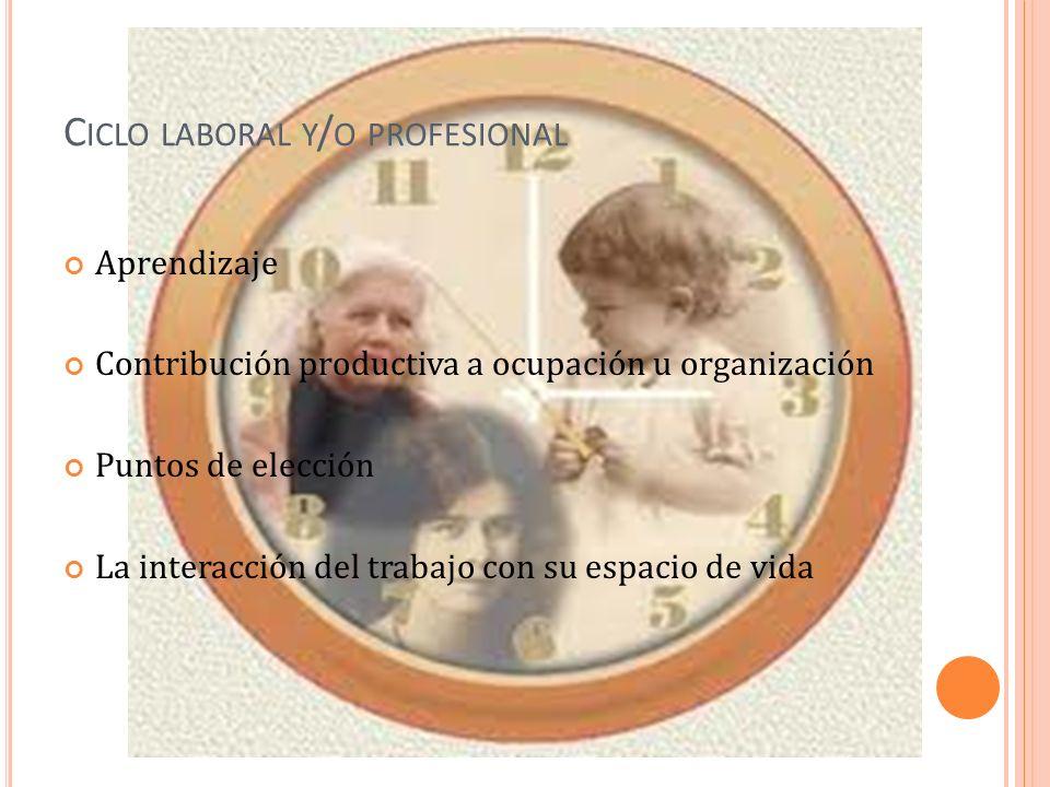 C ICLO LABORAL Y / O PROFESIONAL Aprendizaje Contribución productiva a ocupación u organización Puntos de elección La interacción del trabajo con su espacio de vida