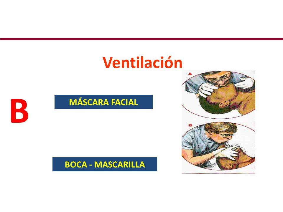 Verifique Circulación Pulso carotídeo/braquial más de 60 Lpm, palpado con certeza 10 seg.