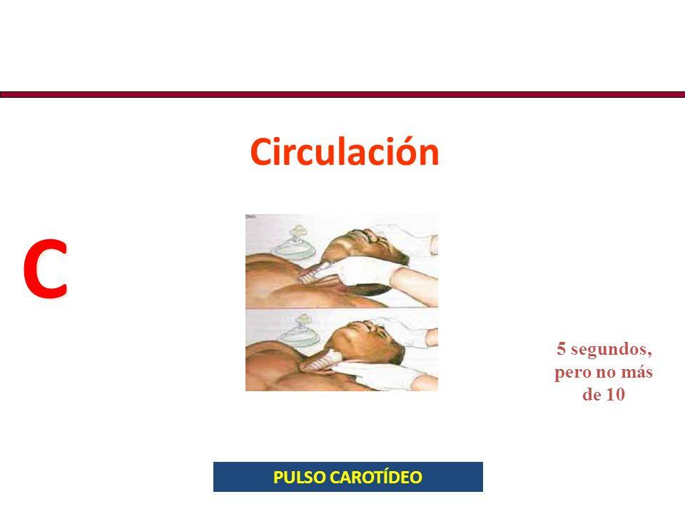 Circulación C C PULSO CAROTÍDEO 5 segundos, pero no más de 10