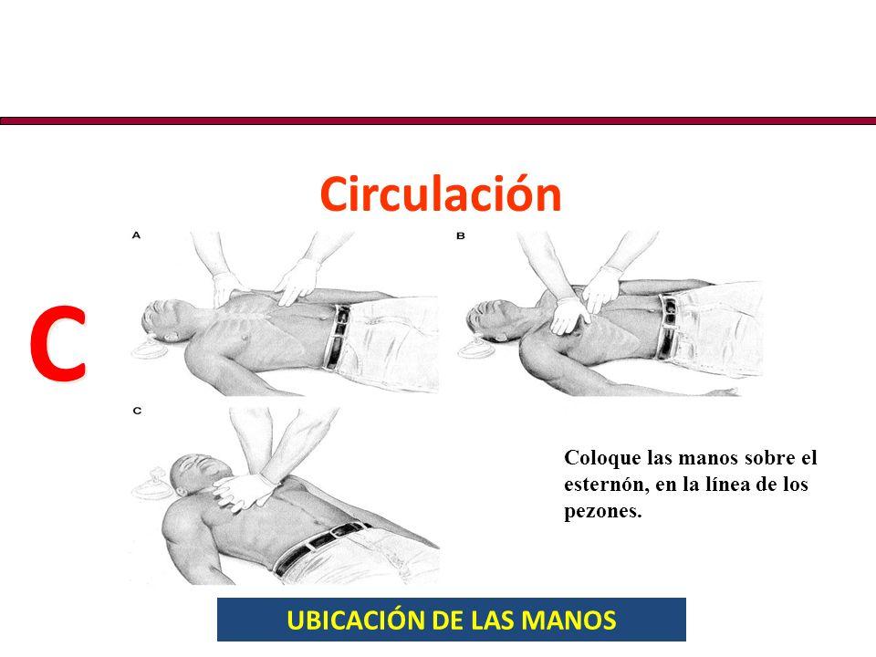 UBICACIÓN DE LAS MANOS Circulación C C Coloque las manos sobre el esternón, en la línea de los pezones.