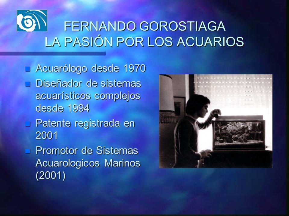 FERNANDO GOROSTIAGA LA PASIÓN POR LOS ACUARIOS n Acuarólogo desde 1970 n Diseñador de sistemas acuarísticos complejos desde 1994 n Patente registrada