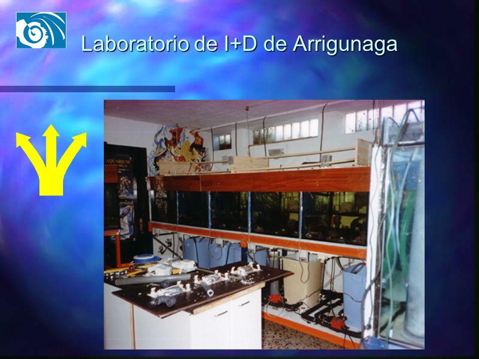 Laboratorio de I+D de Arrigunaga