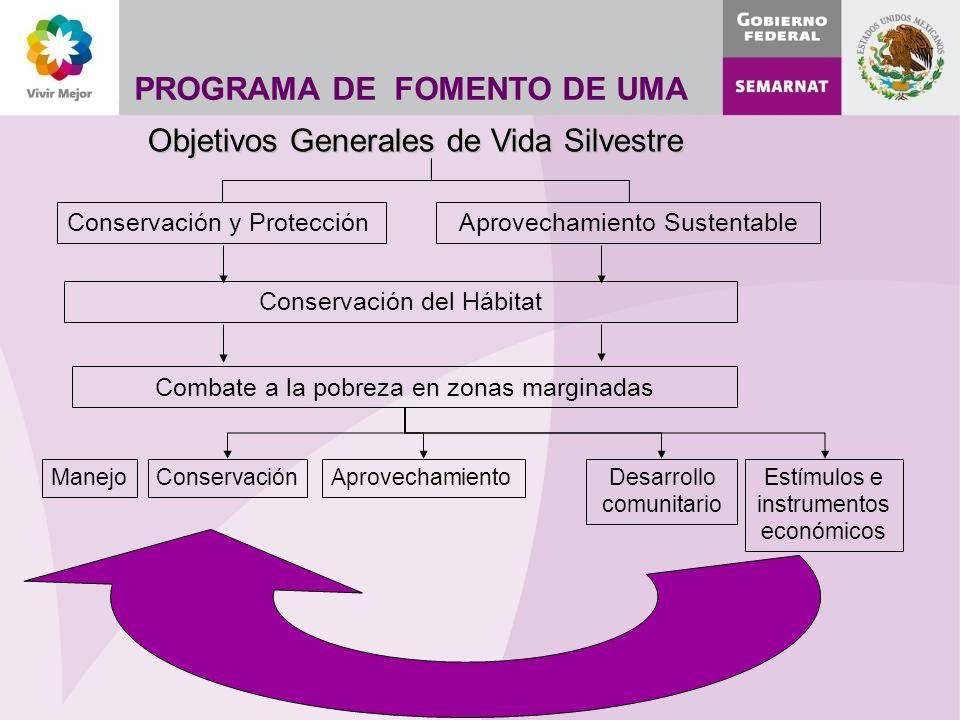 Objetivos Generales de Vida Silvestre PROGRAMA DE FOMENTO DE UMA Conservación del Hábitat Combate a la pobreza en zonas marginadas ManejoConservaciónAprovechamientoDesarrollo comunitario Estímulos e instrumentos económicos Conservación y ProtecciónAprovechamiento Sustentable