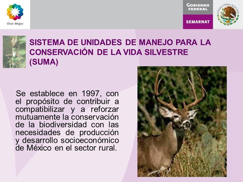 SISTEMA DE UNIDADES DE MANEJO PARA LA CONSERVACIÓN DE LA VIDA SILVESTRE (SUMA) Se establece en 1997, con el propósito de contribuir a compatibilizar y a reforzar mutuamente la conservación de la biodiversidad con las necesidades de producción y desarrollo socioeconómico de México en el sector rural.