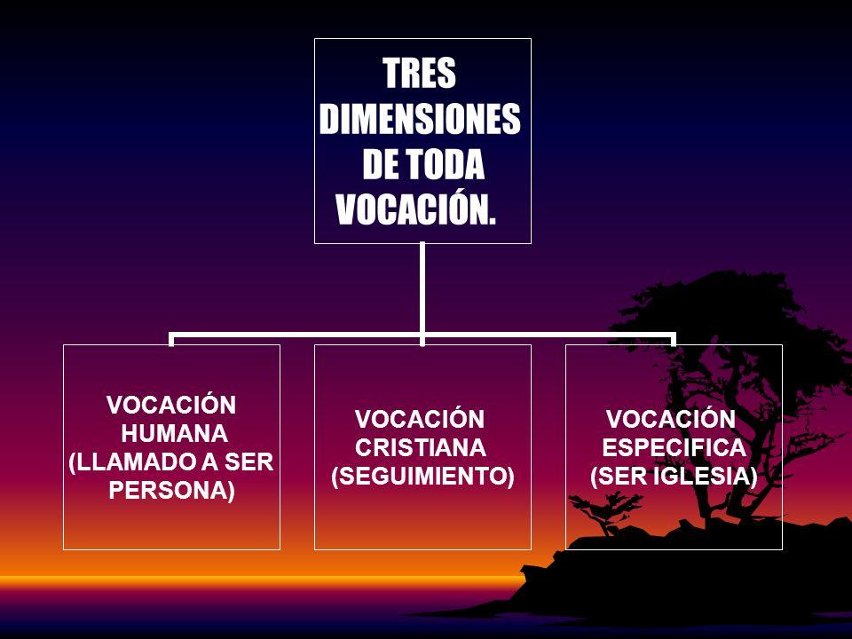 TRES DIMENSIONES DE TODA VOCACIÓN. VOCACIÓN HUMANA (LLAMADO A SER PERSONA) VOCACIÓN CRISTIANA (SEGUIMIENTO) VOCACIÓN ESPECIFICA (SER IGLESIA)