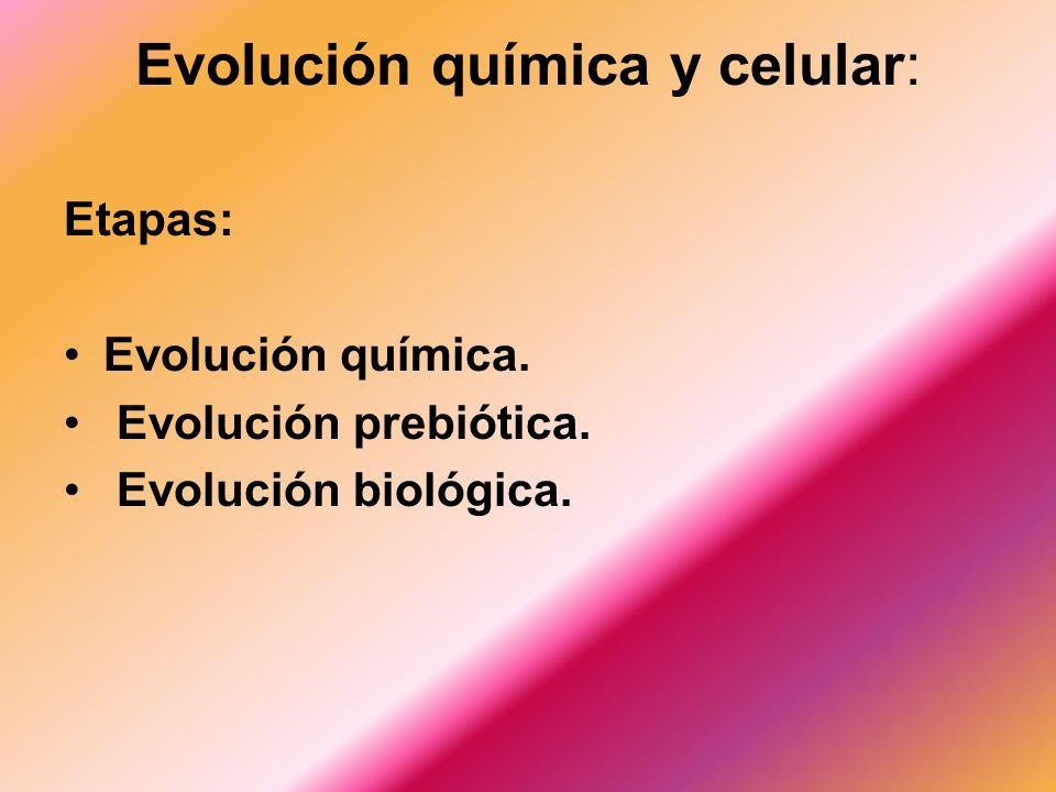 Evolucion Quimica y Biologica Evolución Química y Celular