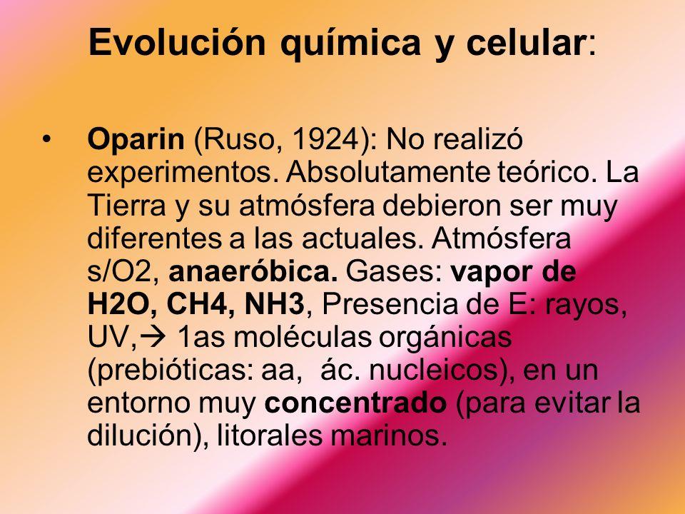 Oparin (Ruso, 1924): No realizó experimentos.Absolutamente teórico.