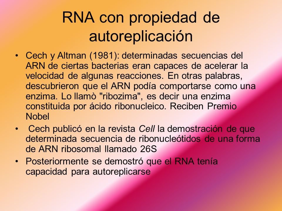 RNA con propiedad de autoreplicación Cech y Altman (1981): determinadas secuencias del ARN de ciertas bacterias eran capaces de acelerar la velocidad de algunas reacciones.