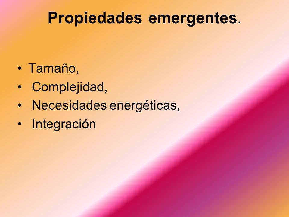 Propiedades emergentes. Tamaño, Complejidad, Necesidades energéticas, Integración