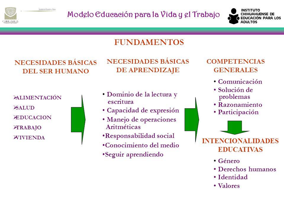 Modelo Educación para la Vida y el Trabajo FUNDAMENTOS NECESIDADES BÁSICAS DEL SER HUMANO NECESIDADES BÁSICAS DE APRENDIZAJE COMPETENCIAS GENERALES ALIMENTACIÓN SALUD EDUCACION TRABAJO VIVIENDA Dominio de la lectura y escritura Capacidad de expresión Manejo de operaciones Aritméticas Responsabilidad social Conocimiento del medio Seguir aprendiendo Comunicación Solución de problemas Razonamiento Participación INTENCIONALIDADES EDUCATIVAS Género Derechos humanos Identidad Valores