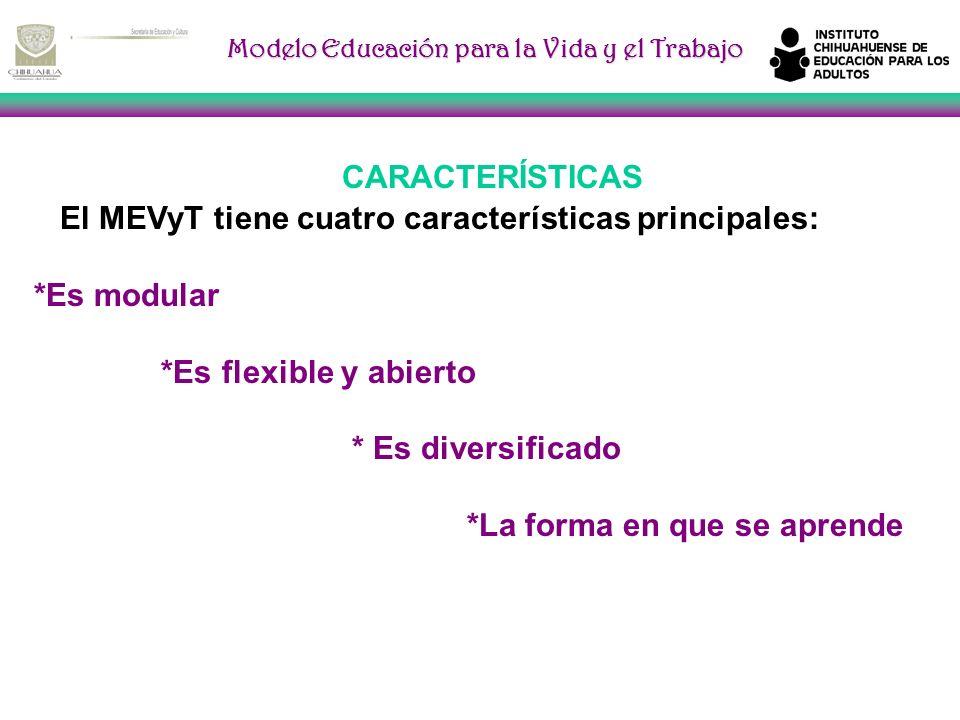 Modelo Educación para la Vida y el Trabajo CARACTERÍSTICAS El MEVyT tiene cuatro características principales: *Es modular *Es flexible y abierto * Es diversificado *La forma en que se aprende