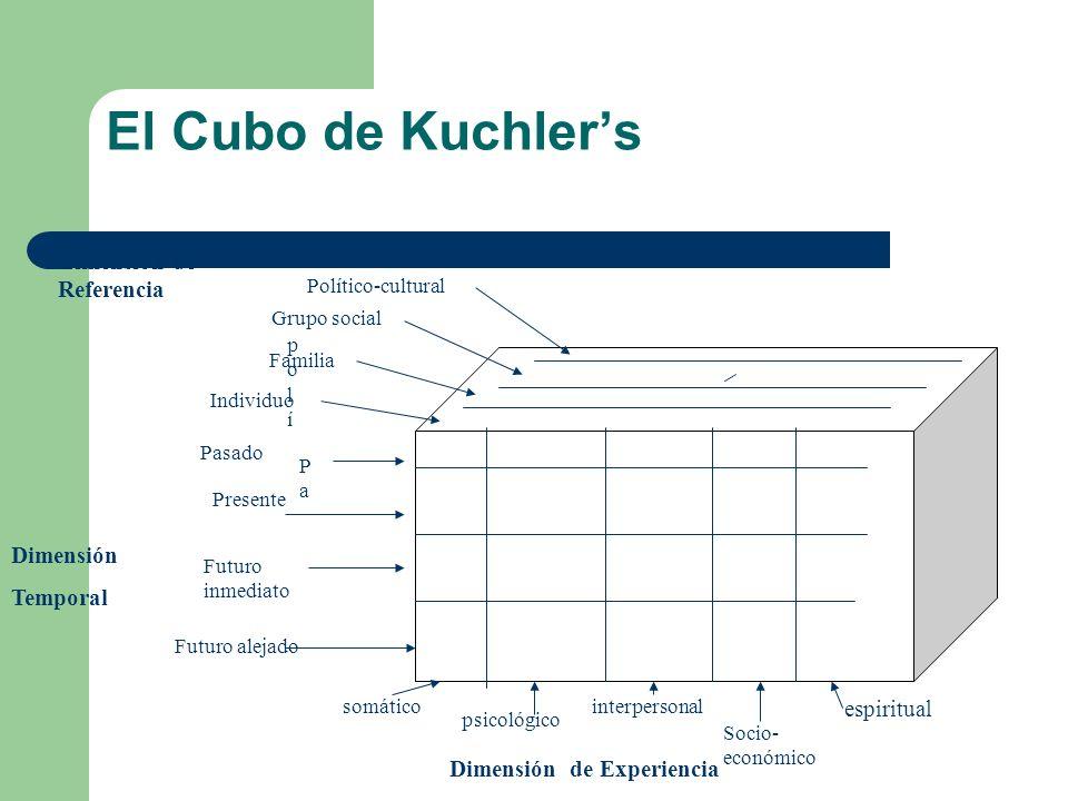 El Cubo de Kuchlers Dimensión de Referencia Dimensión Temporal Dimensión de Experiencia polípolí Político-cultural Grupo social Familia Individuo PaPa