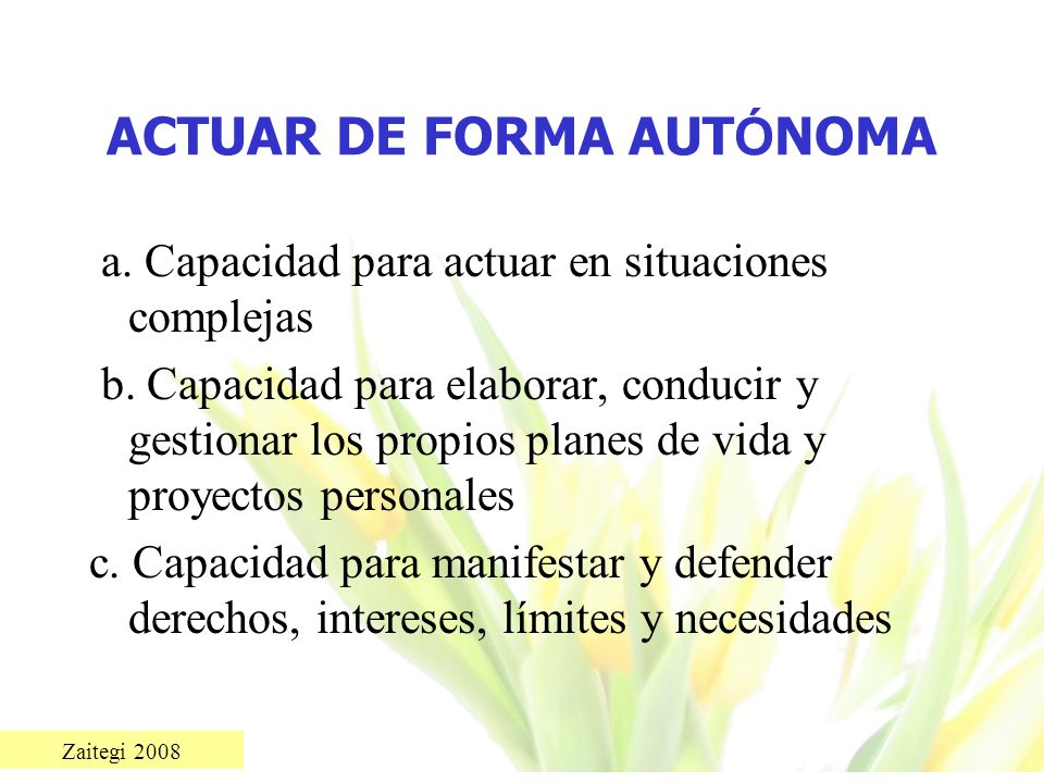 Zaitegi 2008 ACTUAR DE FORMA AUT Ó NOMA a. Capacidad para actuar en situaciones complejas b. Capacidad para elaborar, conducir y gestionar los propios