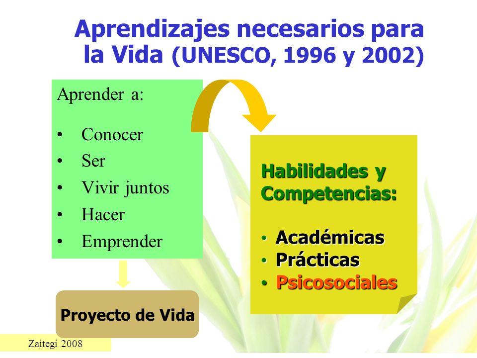 Zaitegi 2008 Aprendizajes necesarios para la Vida (UNESCO, 1996 y 2002) Aprender a: Conocer Ser Vivir juntos Hacer Emprender Proyecto de Vida Habilida