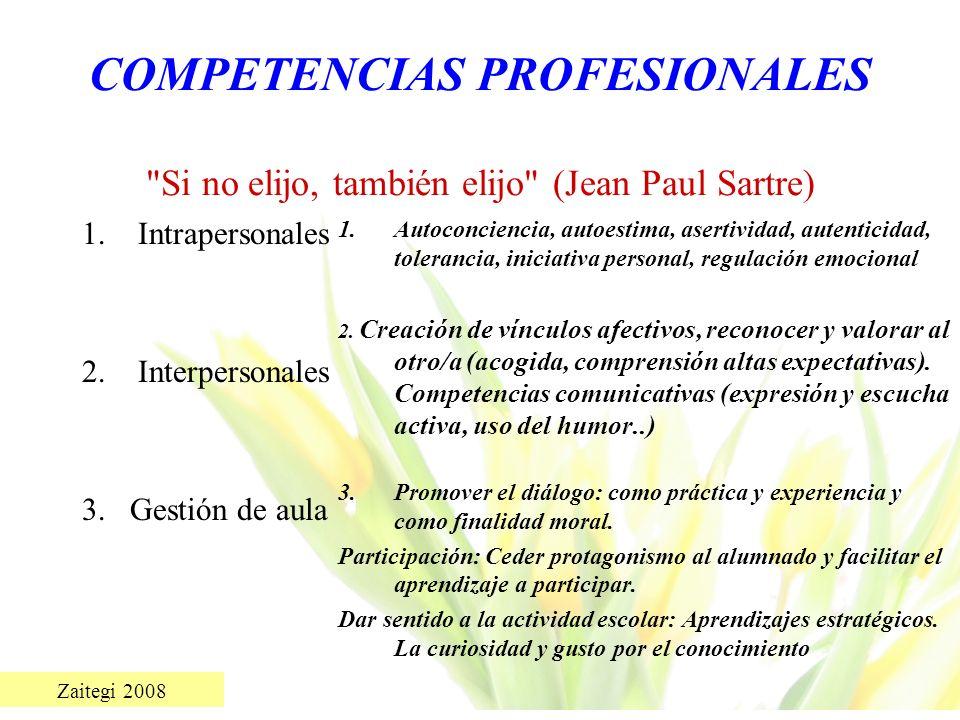Zaitegi 2008 COMPETENCIAS PROFESIONALES