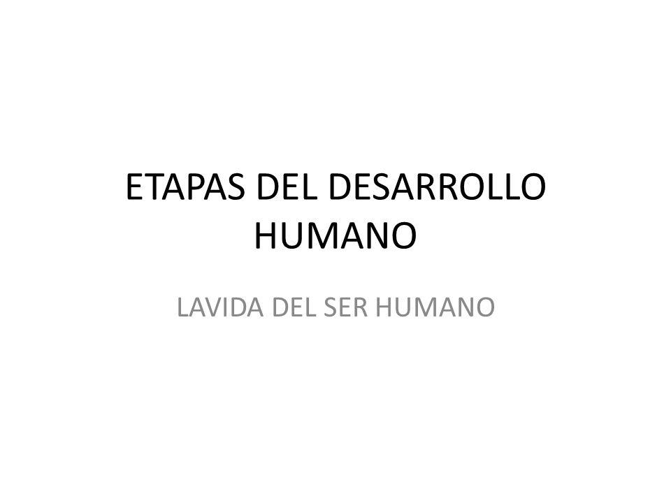 ETAPAS DEL DESARROLLO HUMANO LAVIDA DEL SER HUMANO