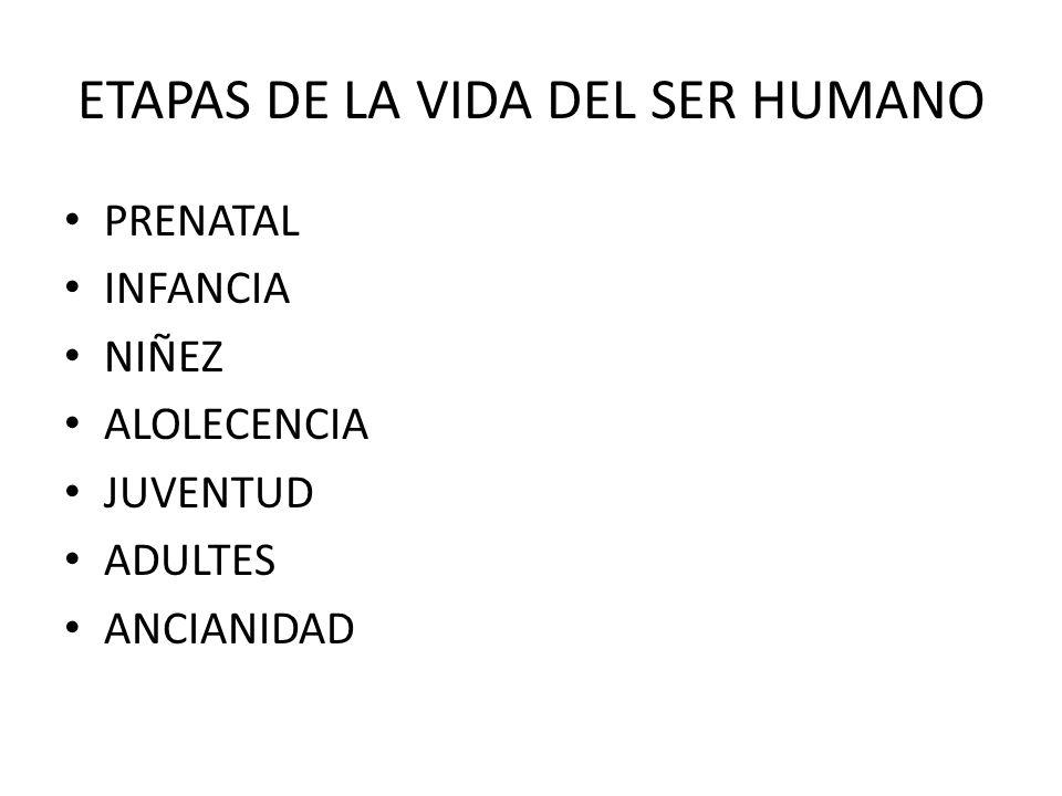 ETAPAS DE LA VIDA DEL SER HUMANO PRENATAL INFANCIA NIÑEZ ALOLECENCIA JUVENTUD ADULTES ANCIANIDAD