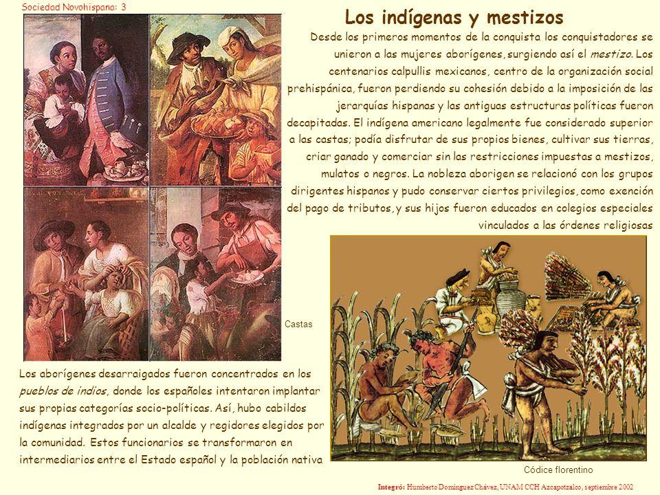 Castas Desde los primeros momentos de la conquista los conquistadores se unieron a las mujeres aborígenes, surgiendo así el mestizo. Los centenarios c