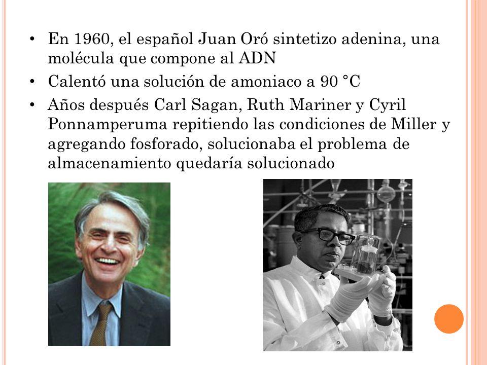En 1960, el español Juan Oró sintetizo adenina, una molécula que compone al ADN Calentó una solución de amoniaco a 90 °C Años después Carl Sagan, Ruth Mariner y Cyril Ponnamperuma repitiendo las condiciones de Miller y agregando fosforado, solucionaba el problema de almacenamiento quedaría solucionado
