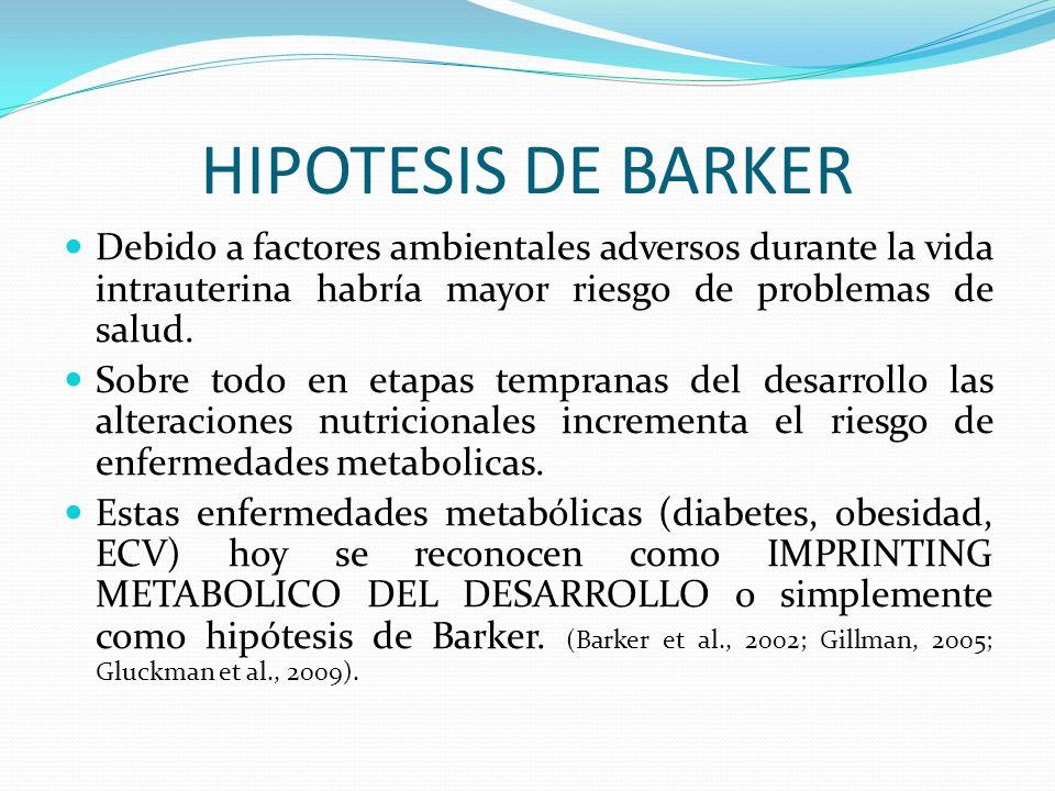 HIPOTESIS DE BARKER Debido a factores ambientales adversos durante la vida intrauterina habría mayor riesgo de problemas de salud. Sobre todo en etapa