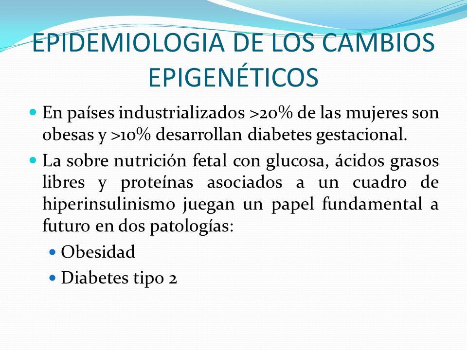 EPIDEMIOLOGIA DE LOS CAMBIOS EPIGENÉTICOS En países industrializados >20% de las mujeres son obesas y >10% desarrollan diabetes gestacional. La sobre