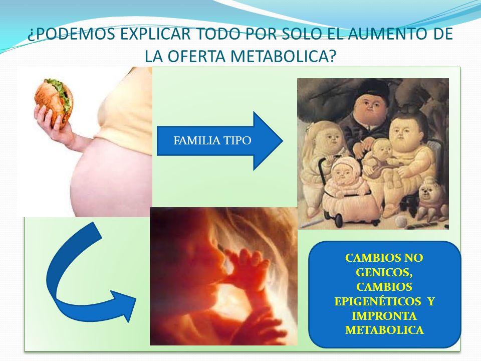 ¿PODEMOS EXPLICAR TODO POR SOLO EL AUMENTO DE LA OFERTA METABOLICA? FAMILIA TIPO CAMBIOS NO GENICOS, CAMBIOS EPIGENÉTICOS Y IMPRONTA METABOLICA