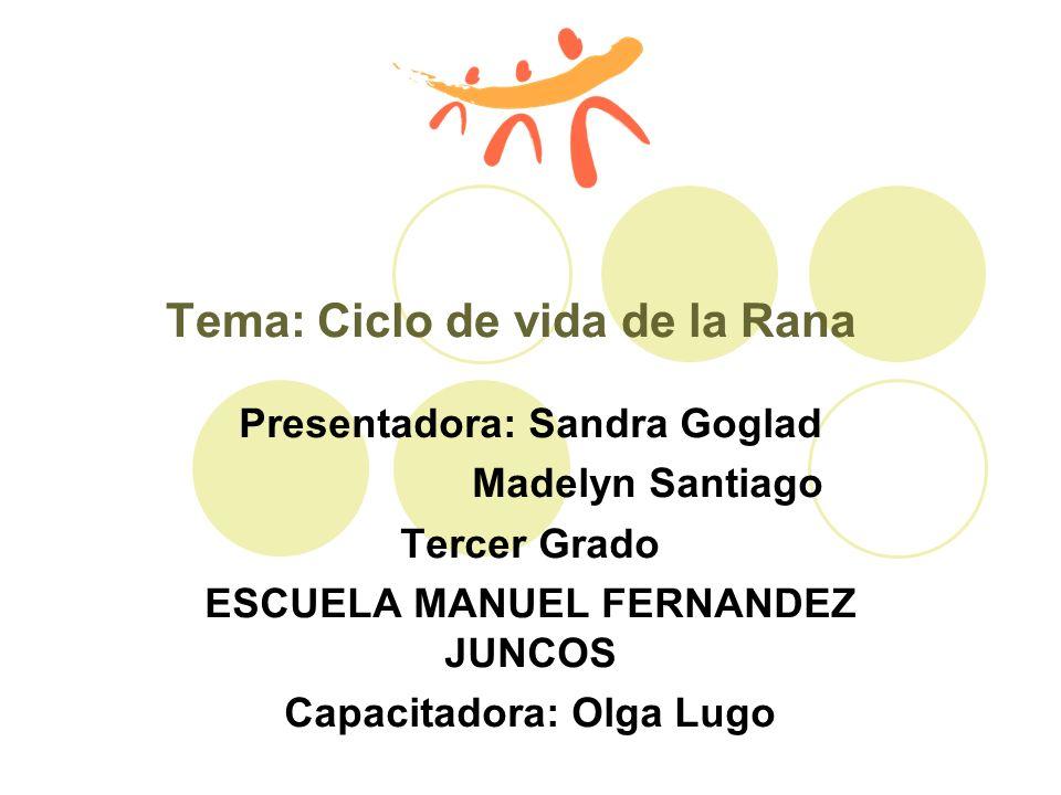 Tema: Ciclo de vida de la Rana Presentadora: Sandra Goglad Madelyn Santiago Tercer Grado ESCUELA MANUEL FERNANDEZ JUNCOS Capacitadora: Olga Lugo