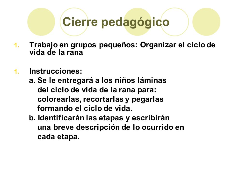 Cierre pedagógico 1. Trabajo en grupos pequeños: Organizar el ciclo de vida de la rana 1. Instrucciones: a. Se le entregará a los niños láminas del ci