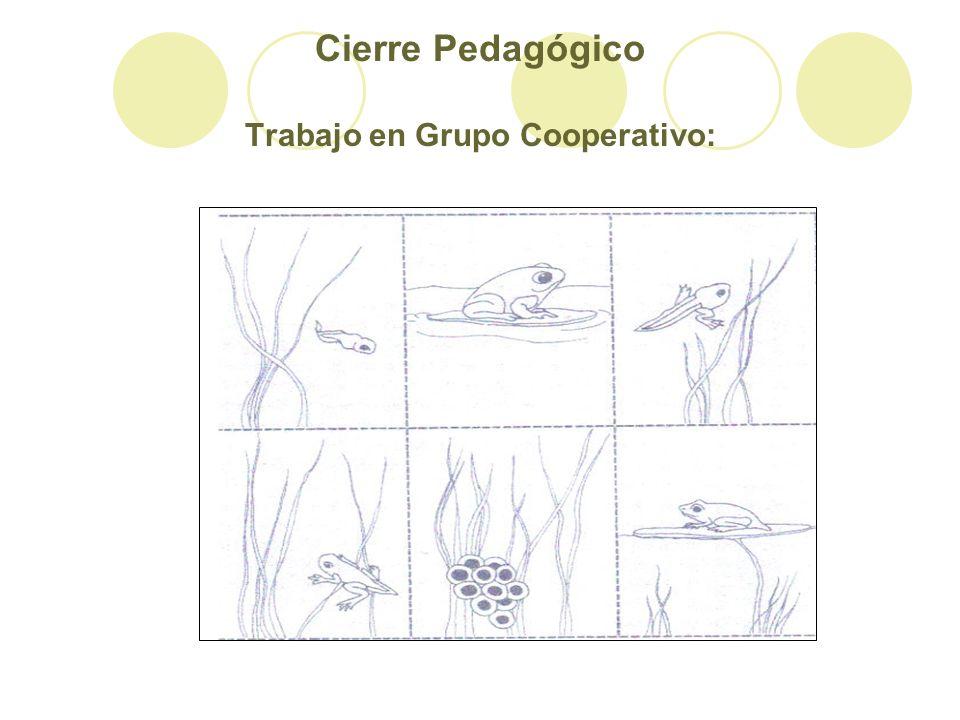 Cierre Pedagógico Trabajo en Grupo Cooperativo: