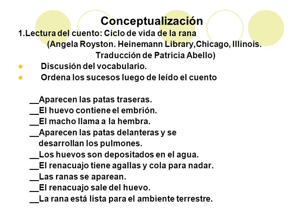 1.Lectura del cuento: Ciclo de vida de la rana (Angela Royston. Heinemann Library,Chicago, Illinois. Traducción de Patricia Abello) Discusión del voca