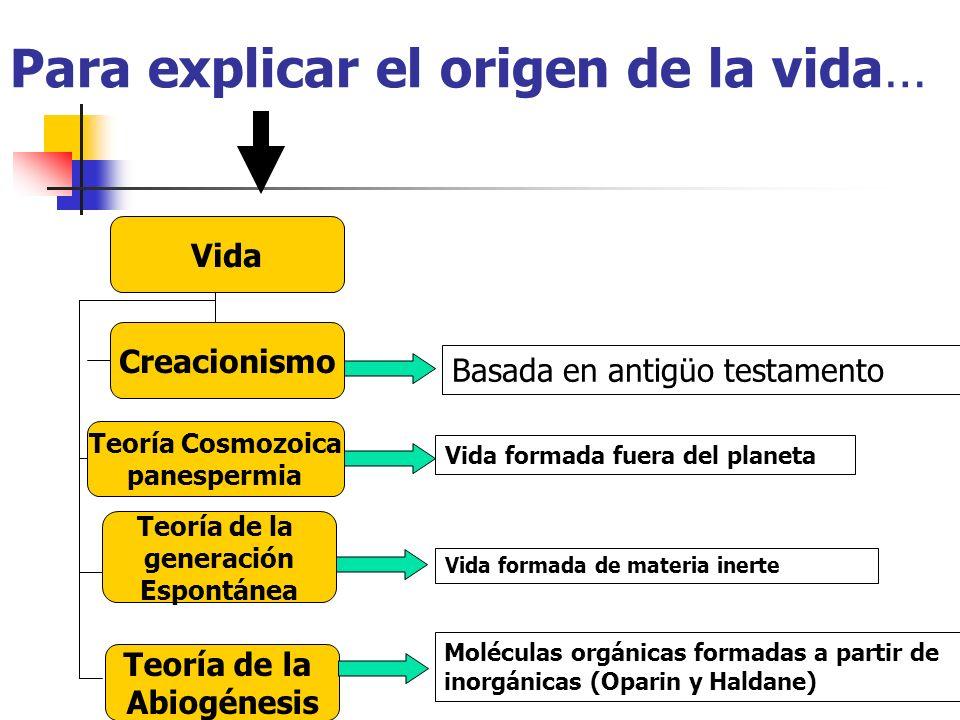Para explicar el origen de la vida… Vida Creacionismo Teoría Cosmozoica panespermia Teoría de la generación Espontánea Teoría de la Abiogénesis Basada