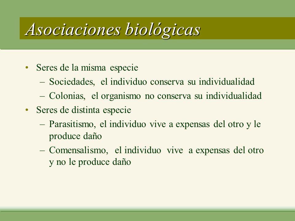 Parásitos : clasificación morfológica Protozoos –seres unicelulares Metazoos – seres pluricelulares helmintos artrópodos