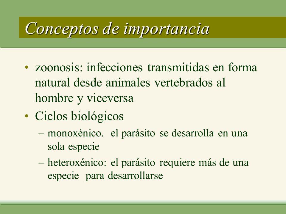 Conceptos de importancia zoonosis: infecciones transmitidas en forma natural desde animales vertebrados al hombre y viceversa Ciclos biológicos –monoxénico.