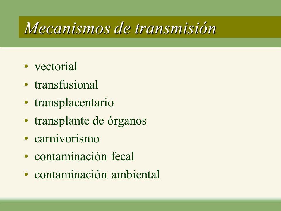 Mecanismos de transmisión vectorial transfusional transplacentario transplante de órganos carnivorismo contaminación fecal contaminación ambiental