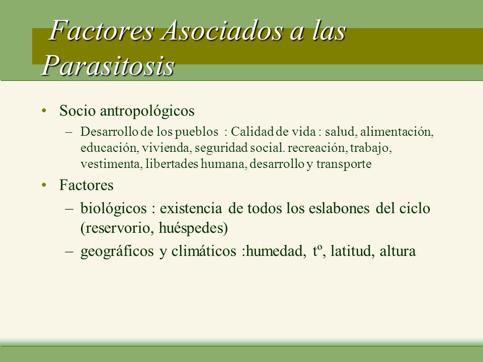 Parasitología huésped (hospedero o mesonero) –organismo simple o complejo, incluyendo al hombre, que en circunstancias naturales permite la sobrevivencia o alojamiento de un agente infeccioso tipos de huéspedes –accidental h.