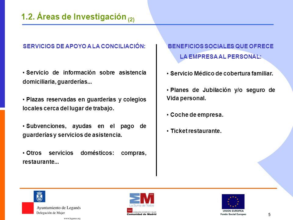 5 1.2. Áreas de Investigación (2) SERVICIOS DE APOYO A LA CONCILIACIÓN: Servicio de información sobre asistencia domiciliaria, guarderías... Plazas re