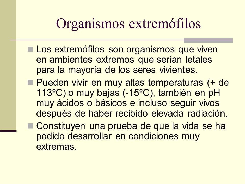 Organismos extremófilos Los extremófilos son organismos que viven en ambientes extremos que serían letales para la mayoría de los seres vivientes. Pue