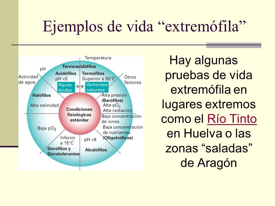 Ejemplos de vida extremófila Hay algunas pruebas de vida extremófila en lugares extremos como el Río Tinto en Huelva o las zonas saladas de AragónRío