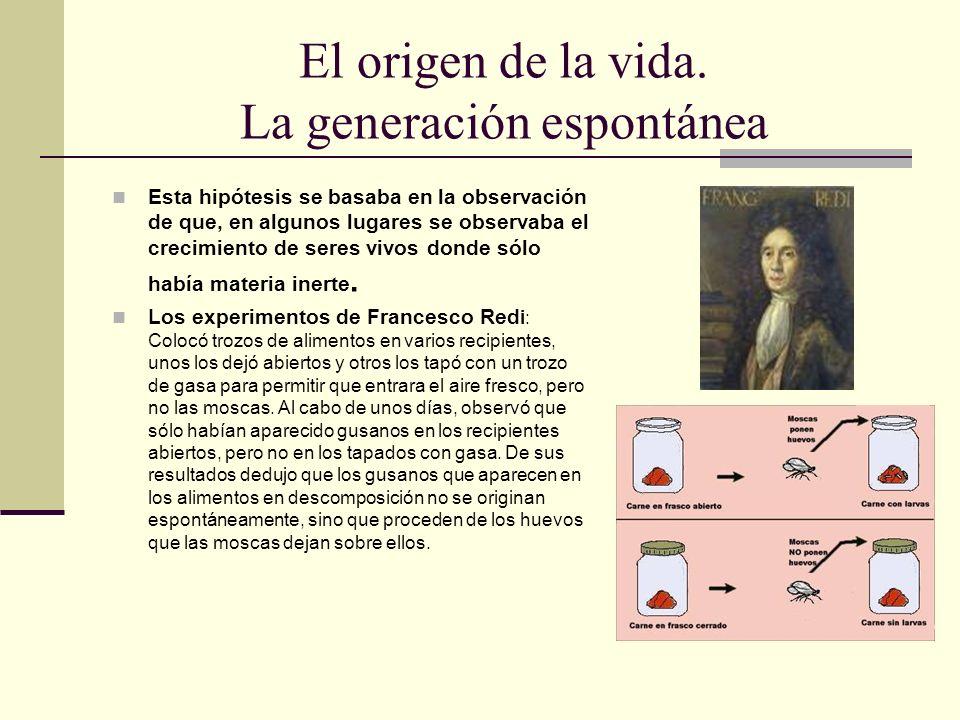 El origen de la vida. La generación espontánea Esta hipótesis se basaba en la observación de que, en algunos lugares se observaba el crecimiento de se