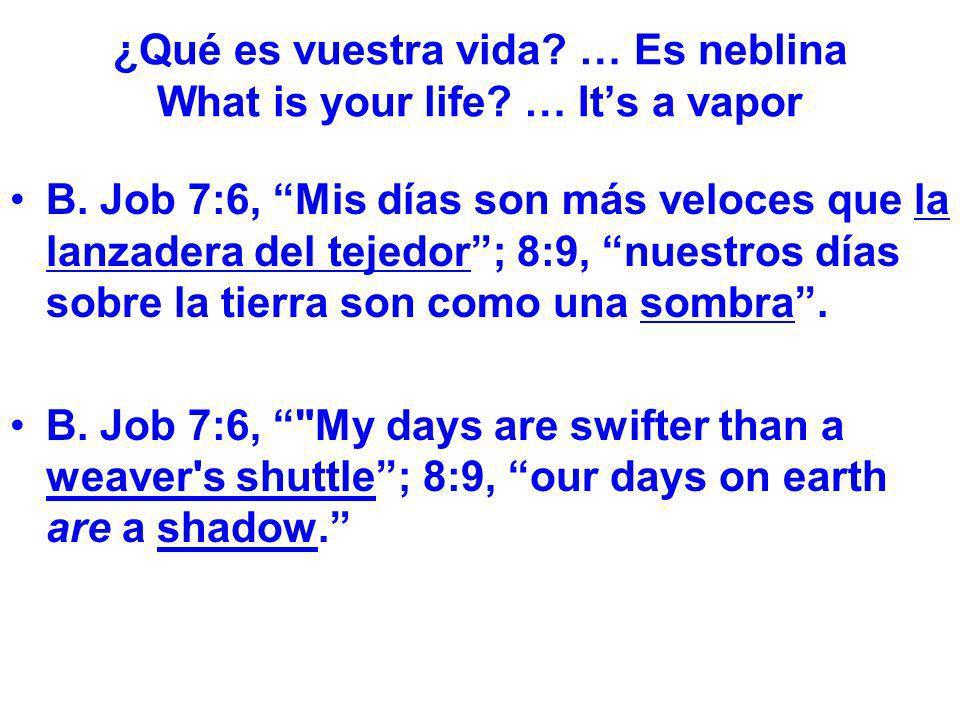 ¿Qué es vuestra vida? … Es neblina What is your life? … Its a vapor B. Job 7:6, Mis días son más veloces que la lanzadera del tejedor; 8:9, nuestros d