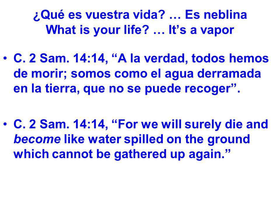 ¿Qué es vuestra vida? … Es neblina What is your life? … Its a vapor C. 2 Sam. 14:14, A la verdad, todos hemos de morir; somos como el agua derramada e