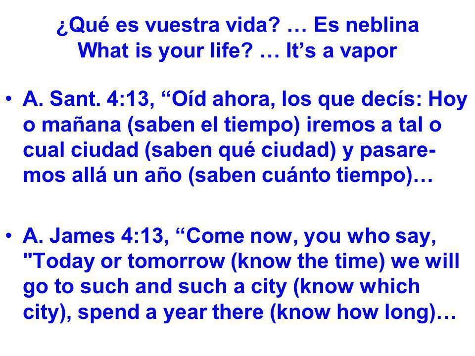 ¿Qué es vuestra vida? … Es neblina What is your life? … Its a vapor A. Sant. 4:13, Oíd ahora, los que decís: Hoy o mañana (saben el tiempo) iremos a t