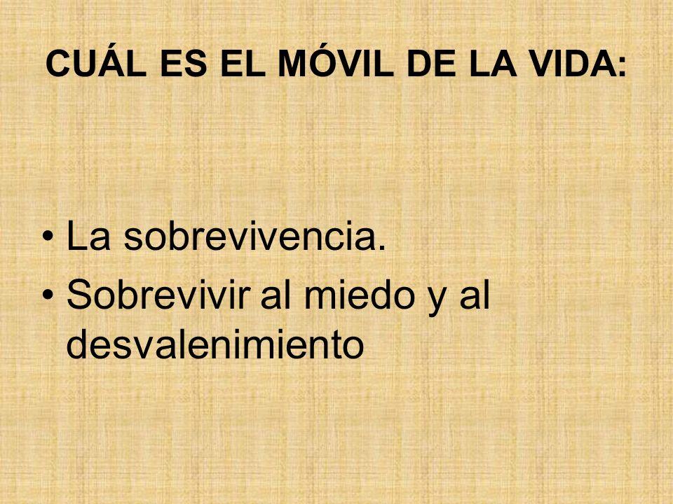 V.- NIVEL TEOLOGAL.
