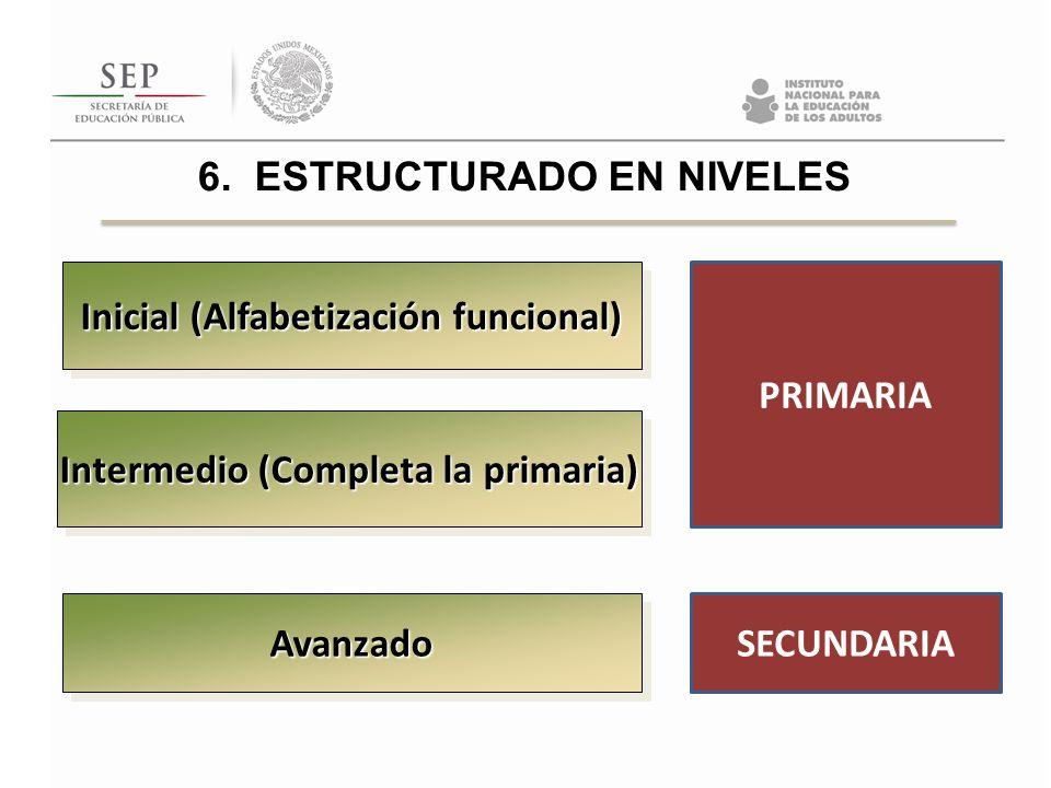 Inicial (Alfabetización funcional) Intermedio (Completa la primaria) AvanzadoAvanzado PRIMARIA SECUNDARIA 6. ESTRUCTURADO EN NIVELES