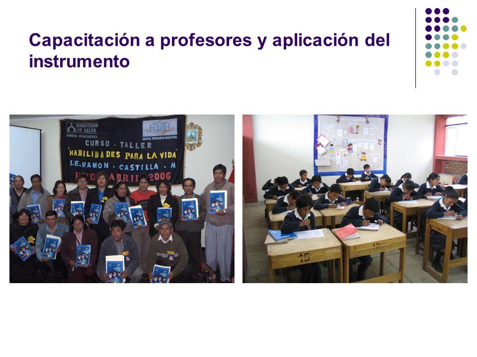 Capacitación a profesores y aplicación del instrumento