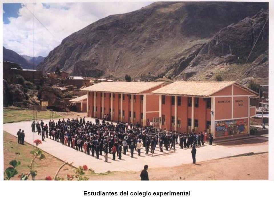 Estudiantes del colegio experimental