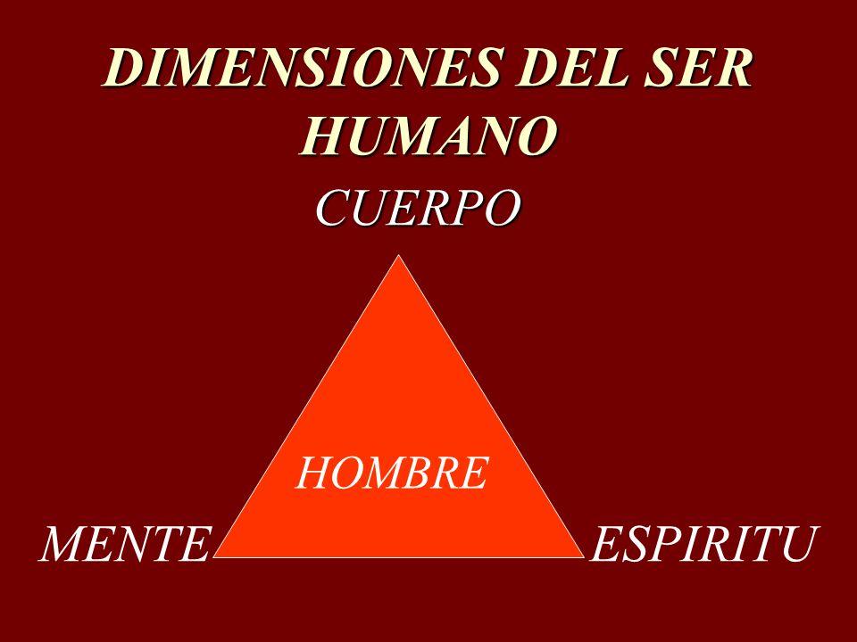 DIMENSIONES DEL SER HUMANO CUERPO CUERPO HOMBRE MENTEESPIRITU