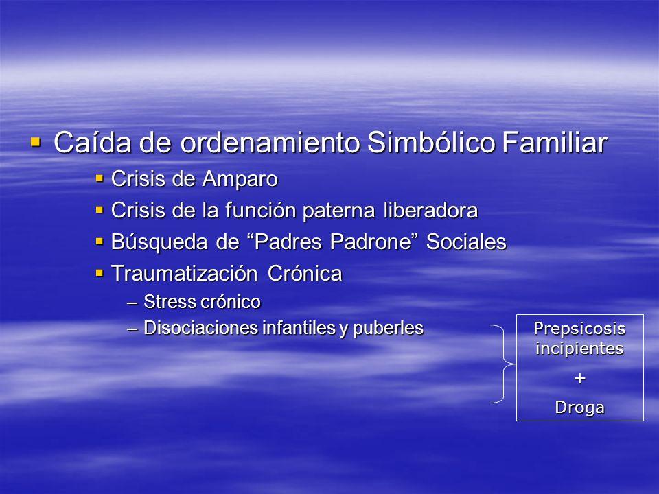 Caída de ordenamiento Simbólico Familiar Caída de ordenamiento Simbólico Familiar Crisis de Amparo Crisis de Amparo Crisis de la función paterna liber