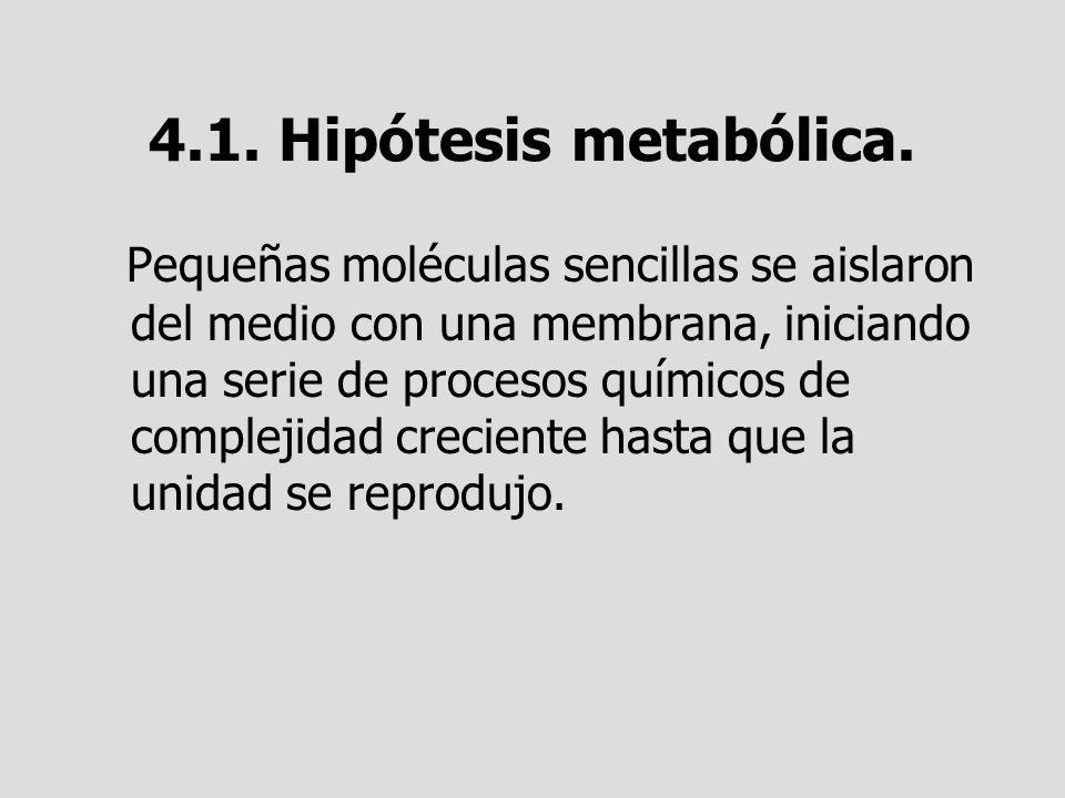 4.1. Hipótesis metabólica. Pequeñas moléculas sencillas se aislaron del medio con una membrana, iniciando una serie de procesos químicos de complejida